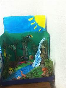Science Bioramas Biome Diorama Project Middle School