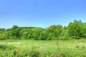 free stock photo of trees and landscape at hoffman state recreation area wisconsin