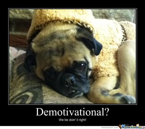 Sad Pug Meme - sad pug by recyclebin meme center