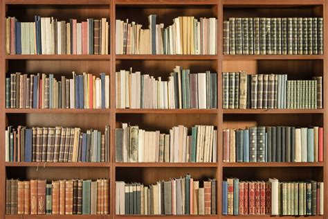 Bookshelf Bookcase Wallpaper Mural By Loveabode