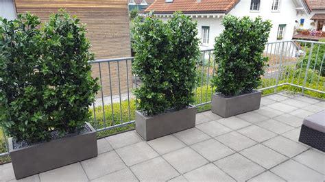 Pflanzen Für Balkon by Wetterfeste Kunsthecken Auf Balkon Premium Kunstpflanzen