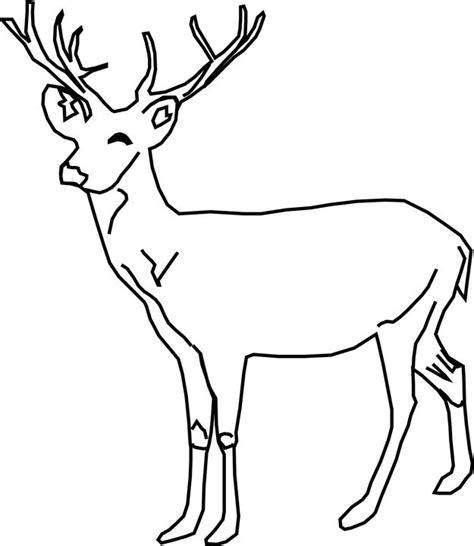 kumpulan sketsa gambar hewan untuk mewarnai anak