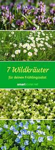Bäume Für Drinnen : die besten 25 kr uter ideen auf pinterest kr utergarten ~ Michelbontemps.com Haus und Dekorationen