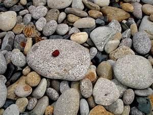 Bilder Feng Shui Steine : feng shui steine bild foto von friseur13 aus zuf llige arrangements fotografie 9270756 ~ Whattoseeinmadrid.com Haus und Dekorationen