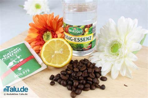 Kühlschrank Geruch Neutralisieren by Schlechte Ger 252 Che Entfernen Gute Geruchsneutralisierer
