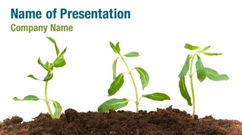growing plant powerpoint templates growing plant
