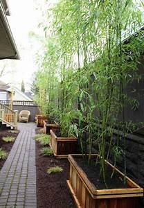 Bac Rectangulaire Pour Bambou : bac fleurs bois diy bambou jardin all e pav s devant ~ Nature-et-papiers.com Idées de Décoration