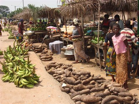 production agricole en c 244 te d ivoire