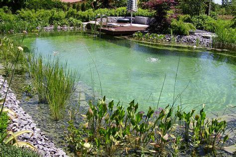 Garten Und Landschaftsbau Cham by Schwimmteich Biopool Schwimmteichbau Galabau Pohl Cham