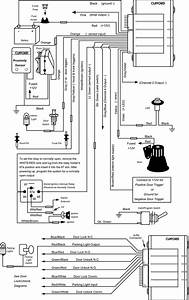 ace 500 With clifford alarm wiring diagram