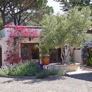 Innenhof Spanischer Häuser : fruitless olive tree two trees swan hill varietal grows faster good for containers ~ Udekor.club Haus und Dekorationen