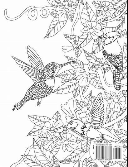 Coloring Exotic Pages Colouring Creatures Adult Winged