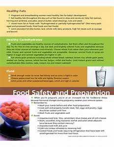 The Pregnancy Food Guide Free Download
