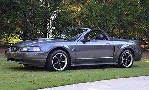 4th gen 2004 Ford Mustang 40th Anniversary Edition For Sale - MustangCarPlace