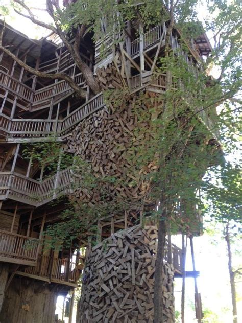 guy spent  years building  worlds largest treehouse   insane