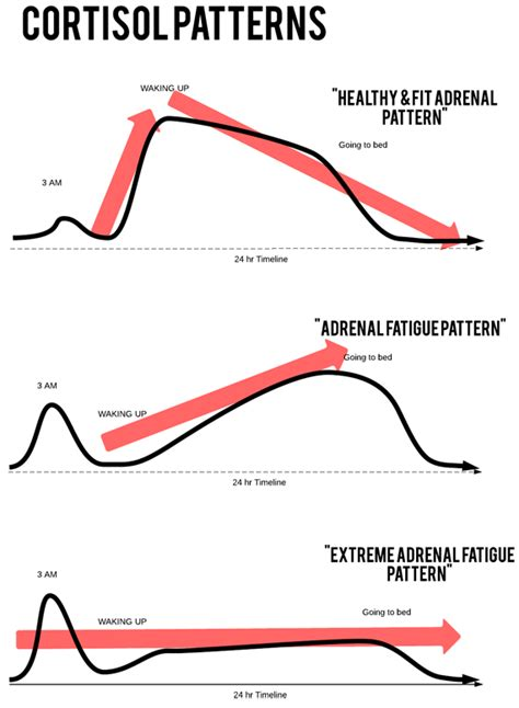 adrenal fatigue treatment  symptoms  brain problem