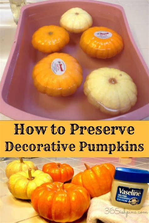 how to preserve pumpkins and decorative gourds pumpkins