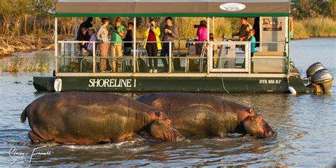 Boat Ride Back To Africa by Isimangaliso Wetland Park St Lucia South Africa