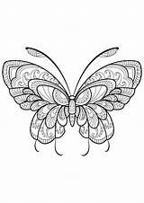 Coloring Butterflies Pages Simple Coloriage Animals sketch template
