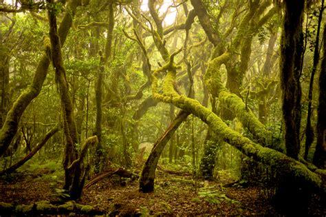 los parques naturales mas impresionantes de espana guia