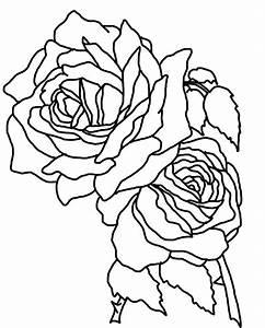 Realistic Roses Coloring Pages for Kids - coloringsuite.com