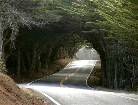 streets most strangest