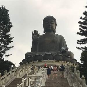 Po Lin Precious Lotus Monastery Hong Kong TripAdvisor