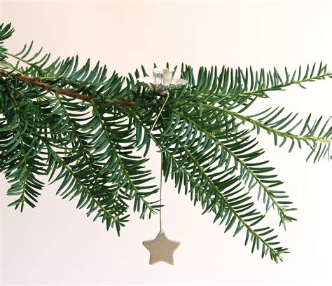 Tannenbaum Aus Zweigen by Pendulum Tree Candle Holder With Weight In
