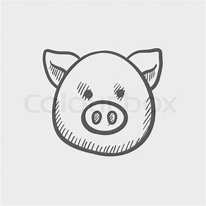 Pig face sketch icon for web and mobile. Hand drawn vector ...