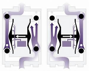 Air Operated Diaphragm Pump Guide  U0026 Aodd Pump Design