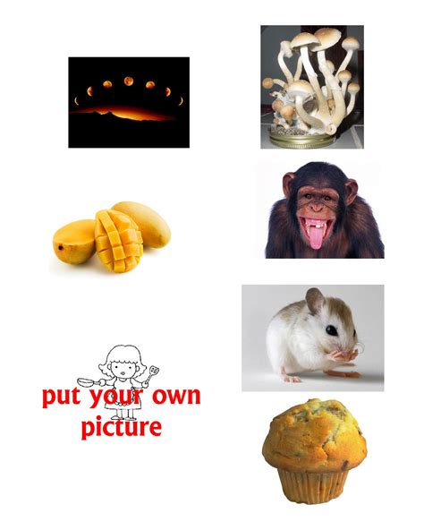 picture of objects starting with letter m images frompo resource pictures of objects start with letters a to z 88258