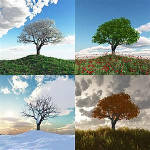 Four Seasons Celle : humeur ~ A.2002-acura-tl-radio.info Haus und Dekorationen