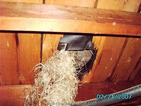attic ventilation requirements   attic vents
