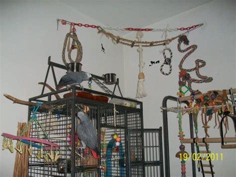 la maison dans la cagne articles de infosurparroquets tagg 233 s quot cage quot blogue de info sur perroquets skyrock