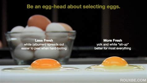 Eggs That Sink In Water by Sacrifice An Egg Save A Breakfast Rouxbe Online