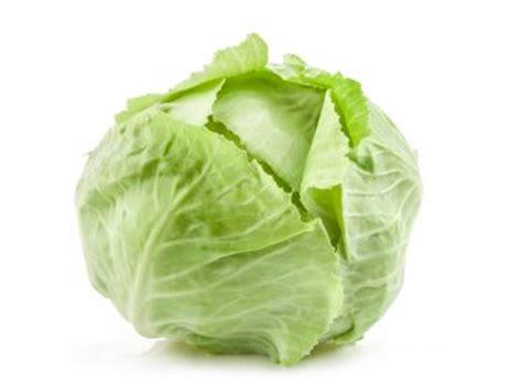 cuisiner un chou vert chou vert légumes