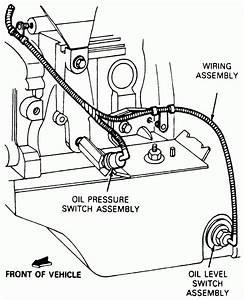 Maxima Oil Pressure Switch Wiring Harness