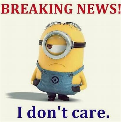 Minions Memes Funniest Trending Minion Quotes Humor