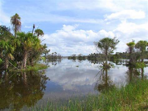 orlando wetlands park christmas