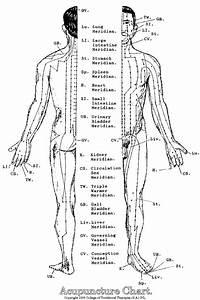 The Imperilled Acupuncture Skeptic  U2013 Geoffrey York