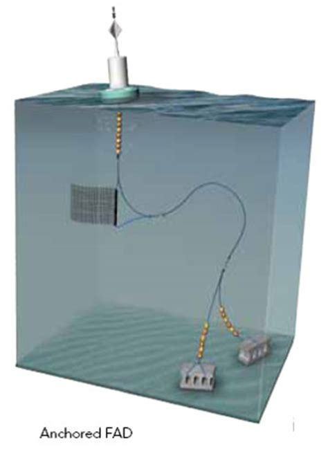 Fish Aggregating Devices Fads