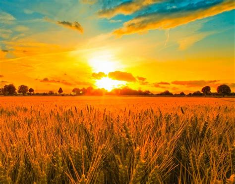 sunset background images hd wallpaper
