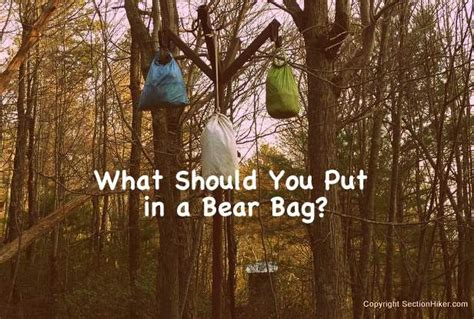 What Should You Put In A Bear Bag?  Hiking Tips