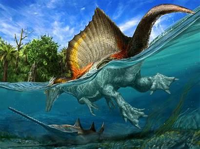 Spinosaurus Dinosaur Aegyptiacus Africa Dinosaurs Water Spine