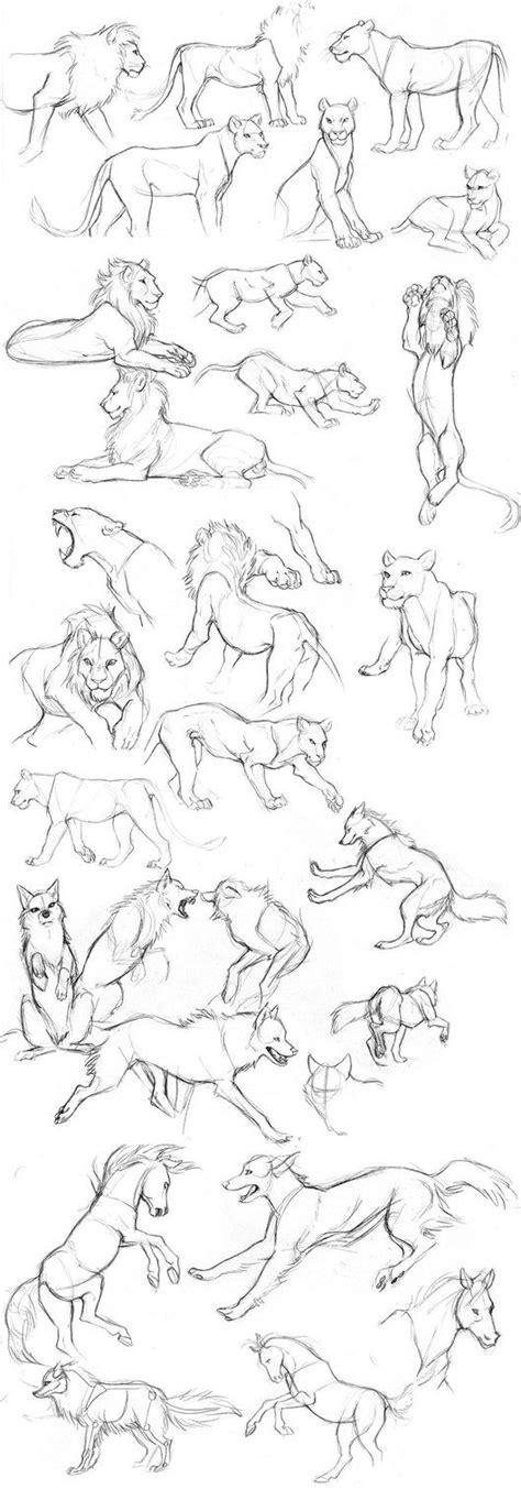 lion art ideas  pinterest
