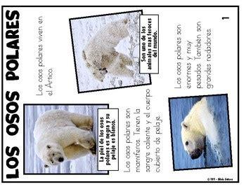 los osos polares  cuento fantastico  animales
