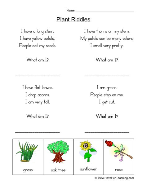 plant worksheets page 2 of 2 teaching
