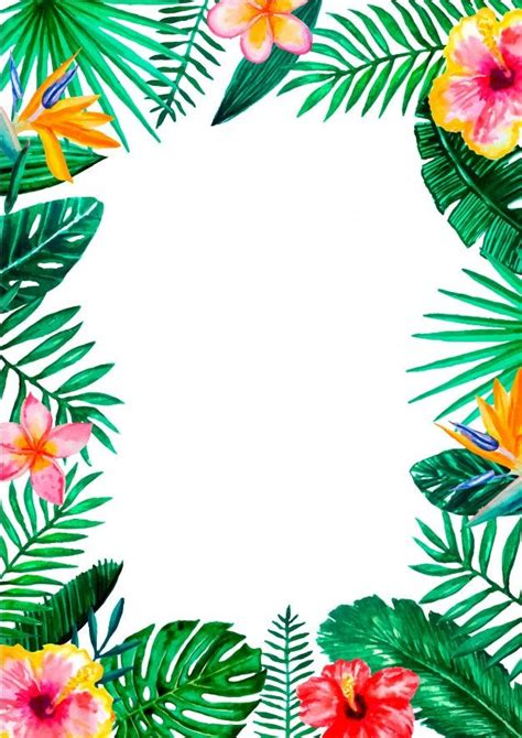 watercolor tropical floral border frame   tropical
