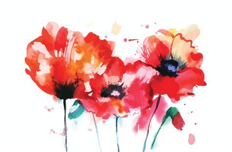 watercolor poppy flower illustrations creative market