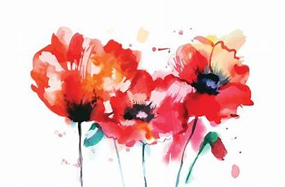 Poppy Watercolor Flower Creative Illustrations